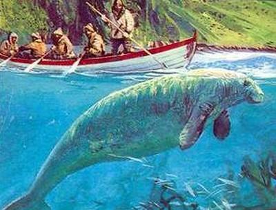 В 1741 году в книге о морских животных